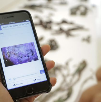 Multimedia App Content